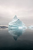 Iceberg, Rode Fjord, Greenland
