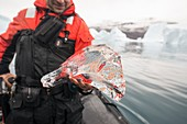 Glacial clear ice from Rode Fjord, Greenland
