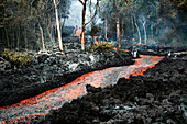 Lava flow due to Kilauea eruption, February 2008