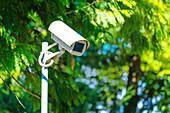 Security camera in park