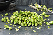 A wreath of hops