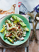 Waldorf salad with chicken, walnuts and apples