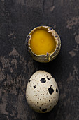 Still life of quail eggs