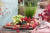 Herbst-Arrangement mit Blattschmuck und Früchten