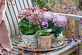 Deko-Chrysanthemen in Stoffsäckchen
