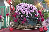 Chrysantheme und Federbusch in Kranz aus Clematisranken
