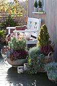 Schalen und Körbe mit Herbst-Bepflanzung auf Balkon
