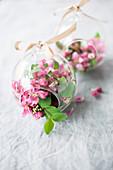Blüten vom Zierapfel in Glaskugel zum Aufhängen