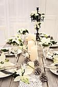 Weihnachtstisch mit Weihnachtssternen, Kerzen, gekalkten Zapfen, Holzsternen, Christbaumkerzenhalter für Kerzen und Namensschilder