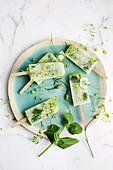 Zucchini-Limonaden-Minzeis am Stiel