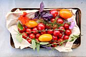 Gelbe und rote Tomaten mit frischen Kräutern (Aufsicht)