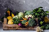 Gemüsekiste mit Kohl, Zwiebeln und Kürbis