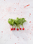 Radishes with leaves on a white surface with red flecks