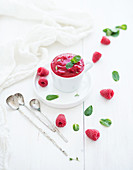 Raspberry sorbet ice-cream with mint leaves