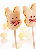 Easter bunny biscuits lollies decorated with chocolate cream and icing
