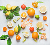 Variety of fresh citrus fruits for making juice or smoothie