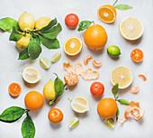 Viele verschiedene frische Zitrusfrüchte mit Blättern