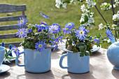 Blaue Frühlings-Tischdekoration mit Anemonen