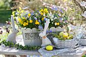 Frühlings-Kasten mit Narzissen, Anemonen und Traubenhyazinthen