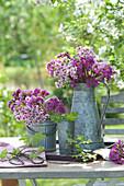 Sträuße aus Bergenien - Blüten in Zink - Gefäßen