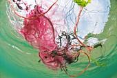 Plastic fishing nets floating in ocean