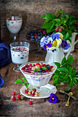 Beeren-Milchpudding