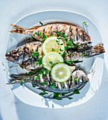 Grilled fish with herbs and lemons