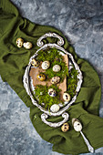 Fresh quail s eggs on tree bark covered with moss placed on olive green fabric