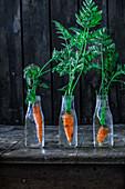 Frische Möhren in Glasfläschchen