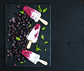 Black-currant and cream ice-creams or popsicles with frozen black-currant and mint on black slate tray over dark grunge backdrop
