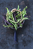 Various fresh beans in an enamel saucepan