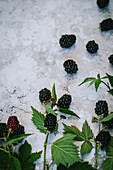Blackberries with leaves on a stone surface