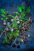 Damsons, red grapes and blackberries with stems