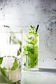 Mojito (cocktail made from Cuban rum, lime juice, peppermint and soda water)