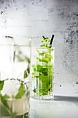 Mojito (Cocktail aus kubanischem Rum, Limettensaft, Pfefferminze und Soda)