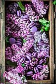 Violette Macarons und Flieder in einer Holzkiste