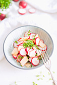Radish salad with apple, cress and lemon vinaigrette