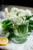 Wild garlic flowers in a glass jar