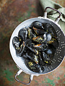 Fresh mussels in a colander