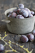 Fresh plums in an old pot