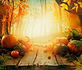 Herbststilleben mit Kürbissen und Obst auf Holztisch im Wald