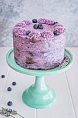 Chocolate and blueberry cake on a cake stand