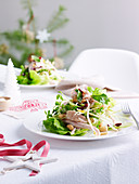 Christmas Turkey, Cranberry and Peanut Salad