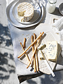 Camembert, blue cheese and breadsticks