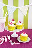 Glutenfreie Cupcakes für eine Party