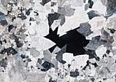 Dolomit Peitlerkofel 105-4 Pol 60x - Dolomit Gesteinsdünnschliff, 60:1