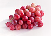 Red table grapes