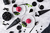 Liquorice ice cream with blackcurrants on white dessert plates