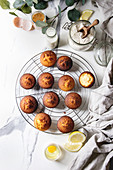Fresh baked homemade lemon cakes muffins standing on cooling rack with eucalyptus branch