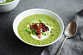Close up of creamy green pea soup with fried bacon and herbs on gray background